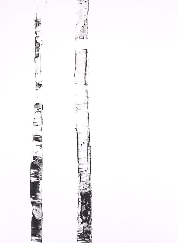 White Birch IX