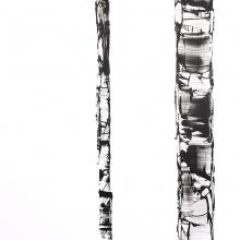 White Birch VII
